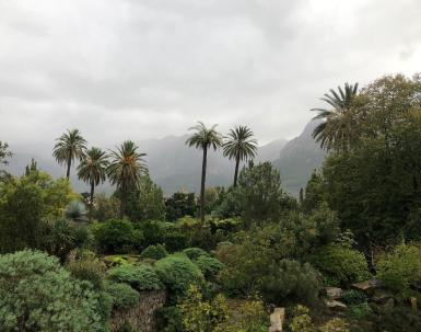 A soggy Soller.