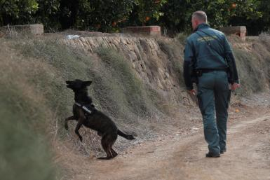 The Guardia Civil searching for missing Marta Calvo.