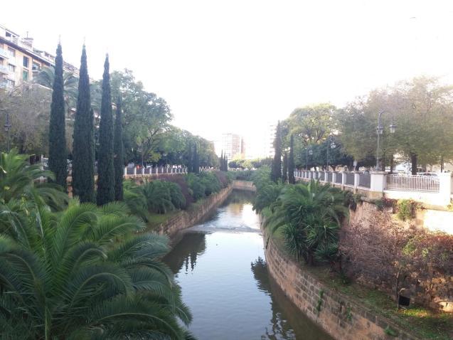 Sunny spells in Palma