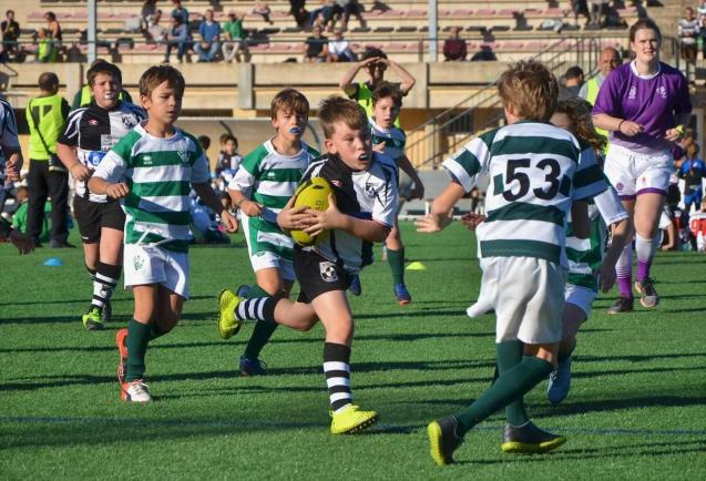 Local rugby
