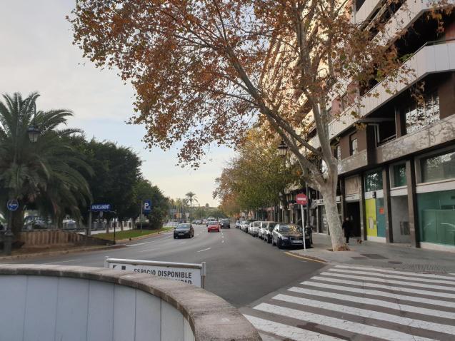 Weather in Mallorca