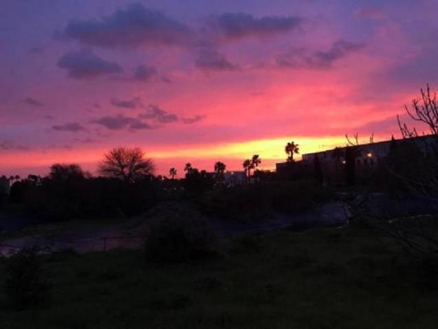 Sunrise over the University of Balearics campus