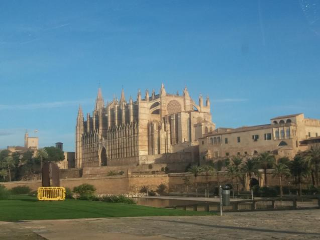Warm and sunny in Palma today