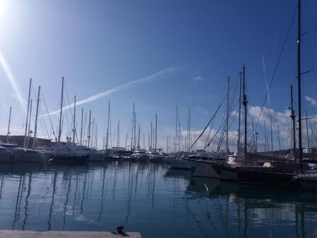 A beautiful winter's day in Palma