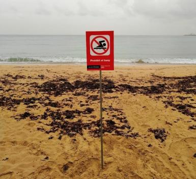 There have been regular issues with contamination at two Palma beaches.