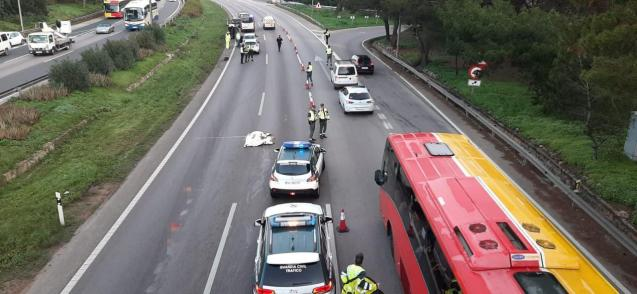 Scene at the Llucmajor motorway.