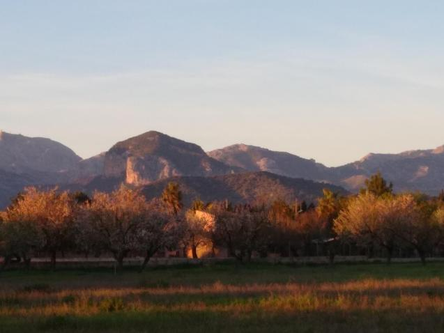 Sunny views to the Tramuntana