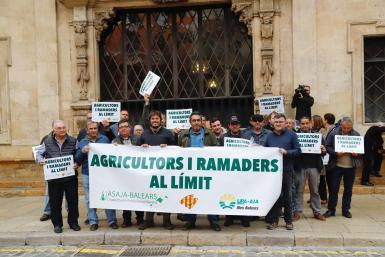 Farmers' protest outside Palma town hall on Wednesday.