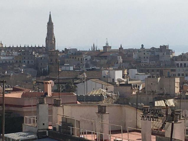 Rooftops in Palma