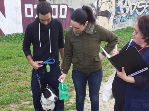 Inca City Council gives pet owners bottles of water to wash away dog urine.