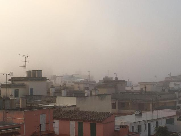 Palma Cathedral disappears in the fog.