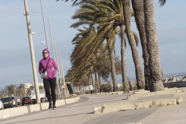 More strong winds forecast in Majorca.