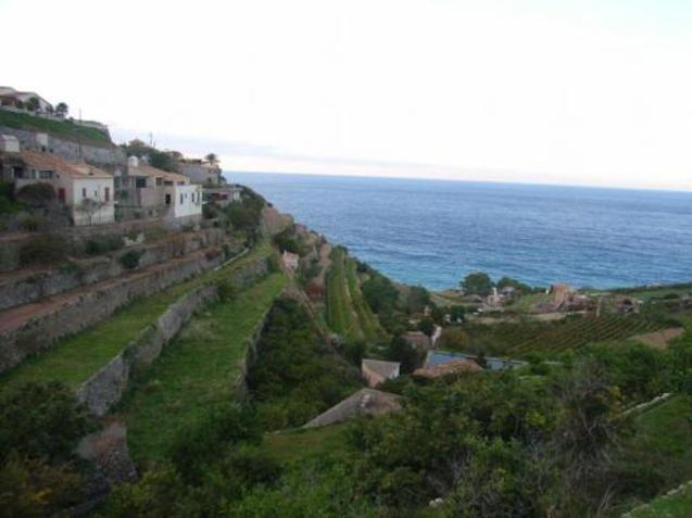Banyalbufar coastline.