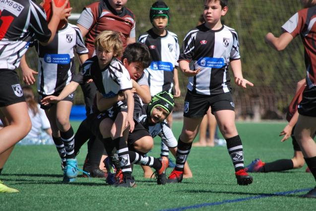 Rugby Day play