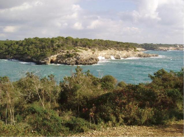 Mondragó Nature Reserve