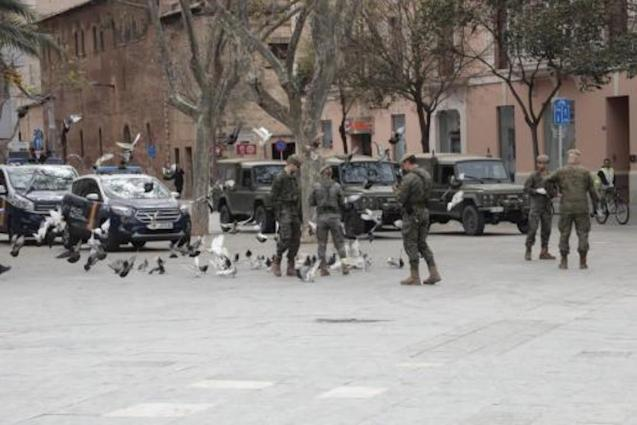 Armed Forces in Palma.