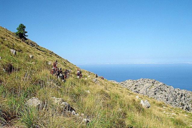 Artà-Lluc riding route of natural beauty.
