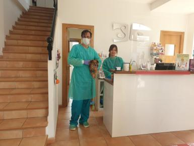 Basil with some of the Calvia Vet team.
