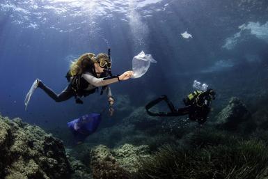 Underwater beach clean.