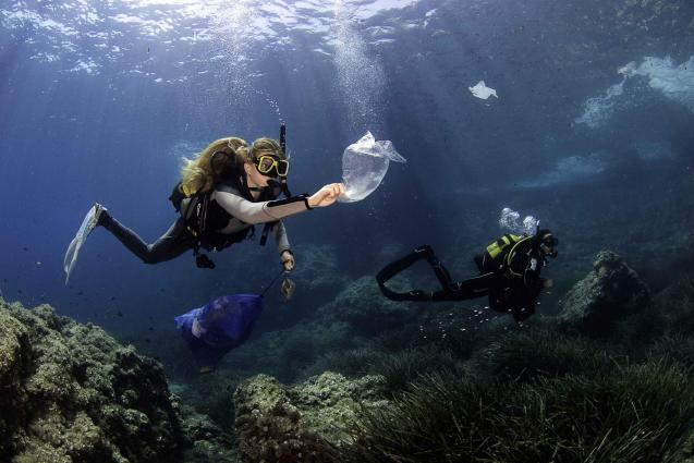 Underwater beach clean