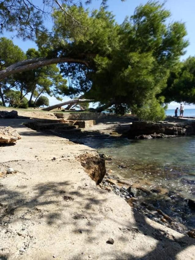 Majorca sunny with strong winds in some places on Sunday.