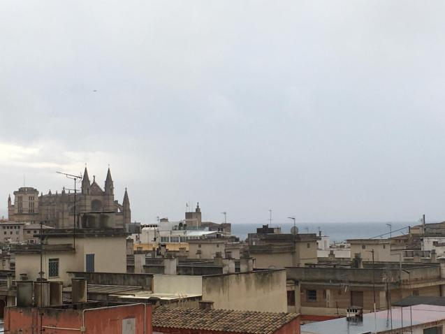 Cloudy, wet and windy in Palma on Tuesday.
