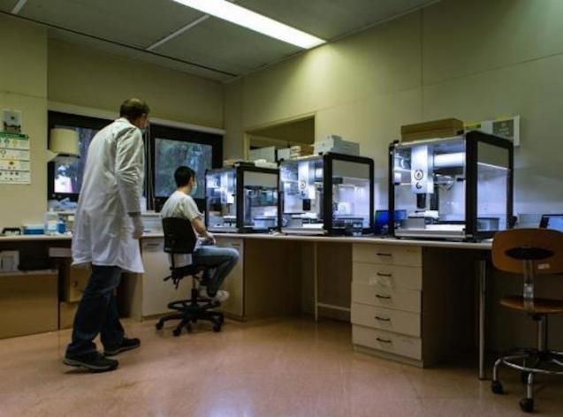 Coronavirus fatalities increase in Spain.