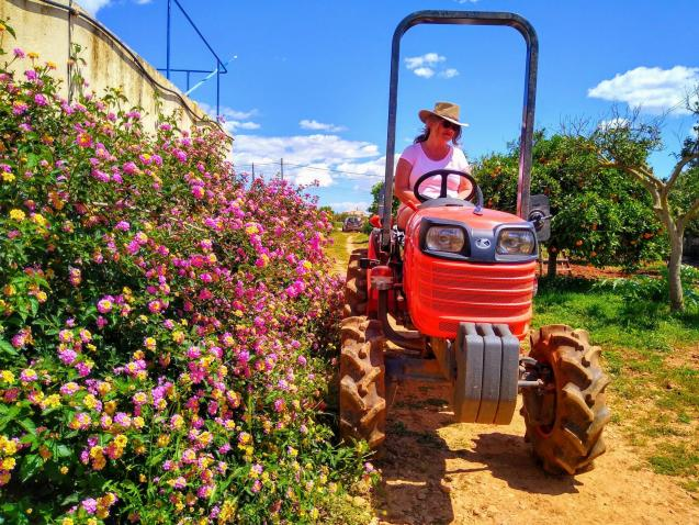 Tractoring in Mallorca