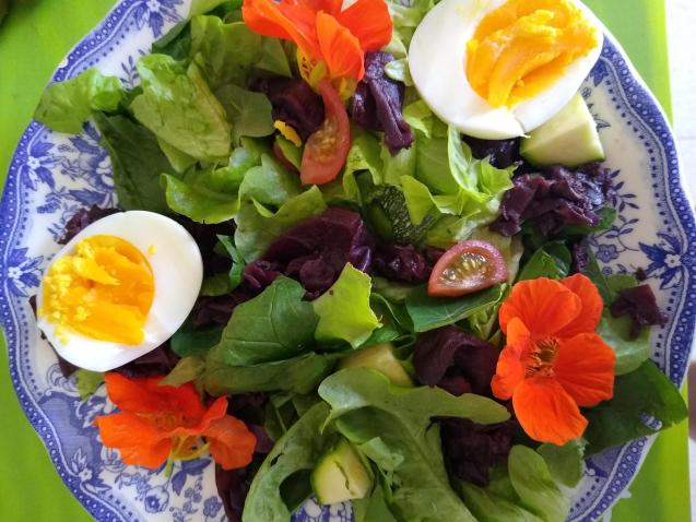 (All from the garden and hens) lunch.