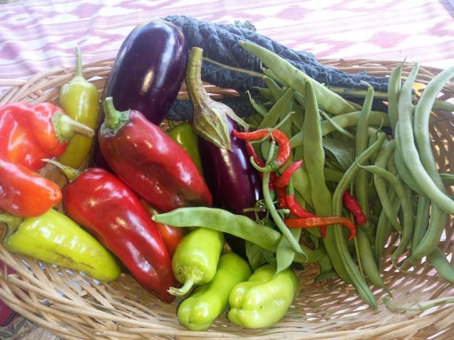 Basket of mixed veg last year