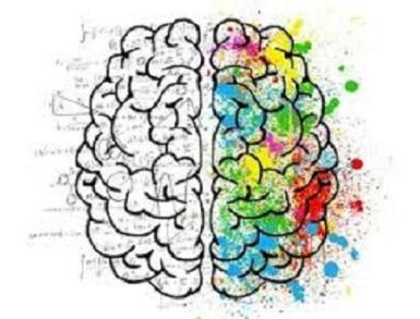 Bilingual brain.