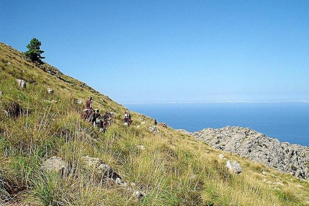 Arta-Lluc Route