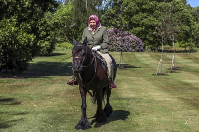 Queen Elizabeth II riding Balmoral Fern in Windsor Home Park.