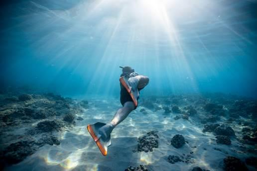 Freediving is a form of yogic practice.
