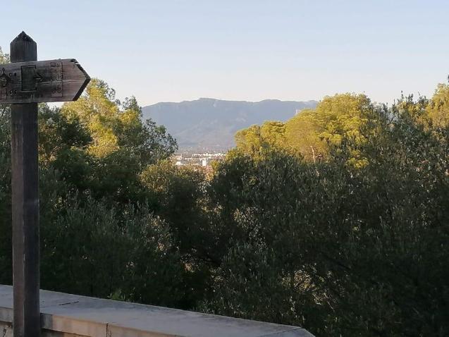 Majorca.
