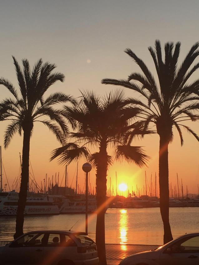 Paseo Marítimo, Palma.
