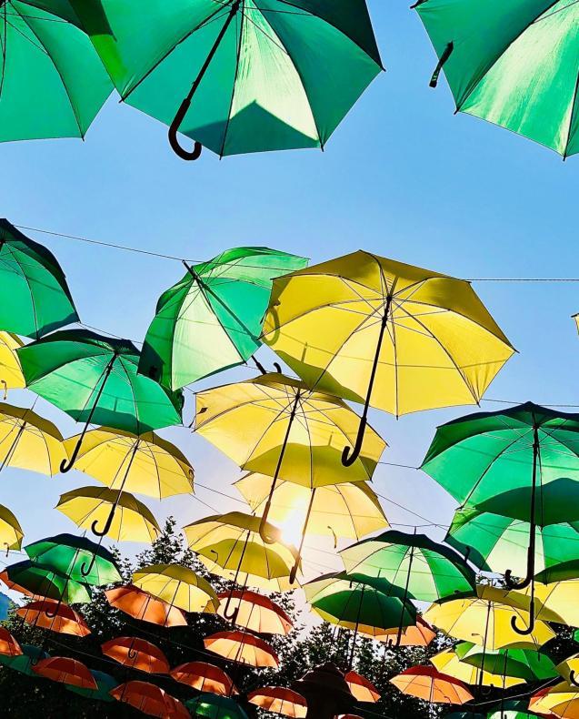 Any umbrellas?