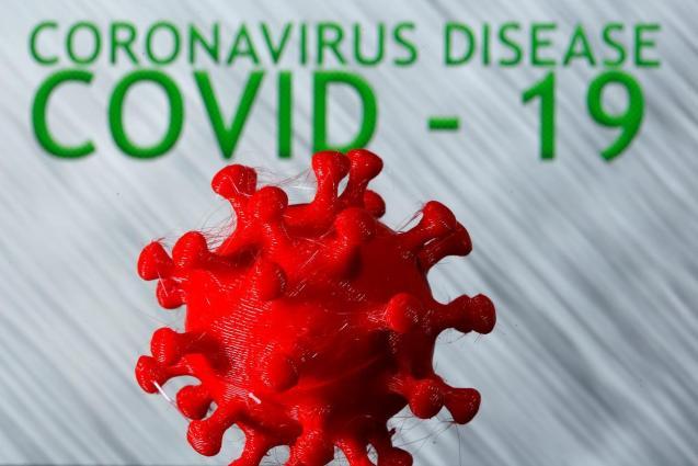 A 3D-printed coronavirus model.