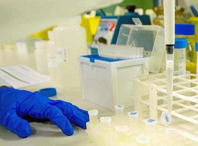 Idisba to carry out Covid-19 Research.