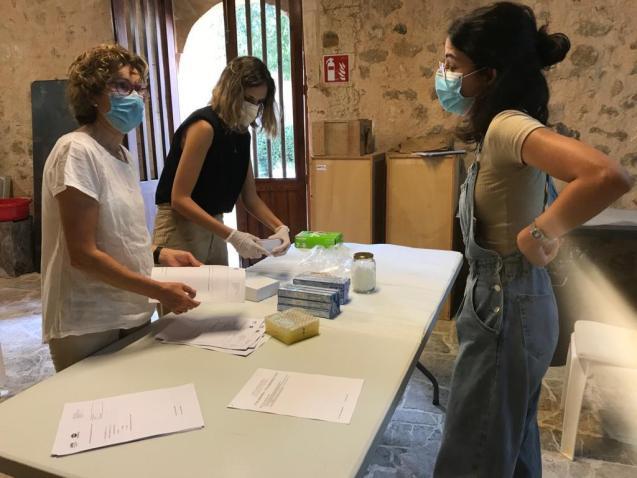 DNA sampling for Mallorca Civil War victims