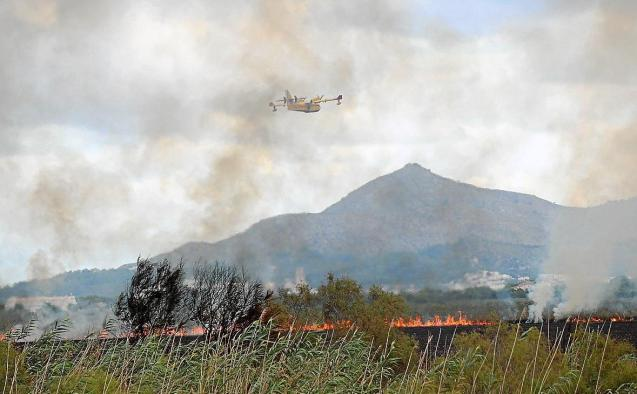 Albufera fire, Mallorca
