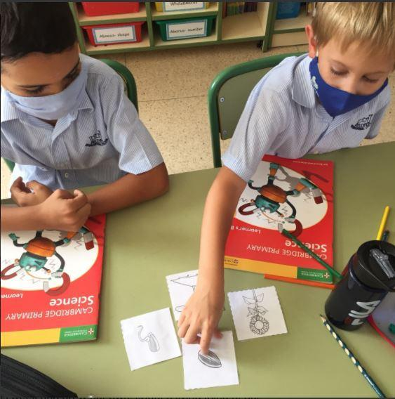 Year 3 Science work
