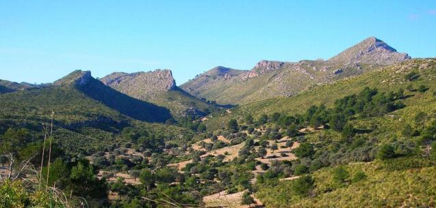 Parc de Levant, Majorca.