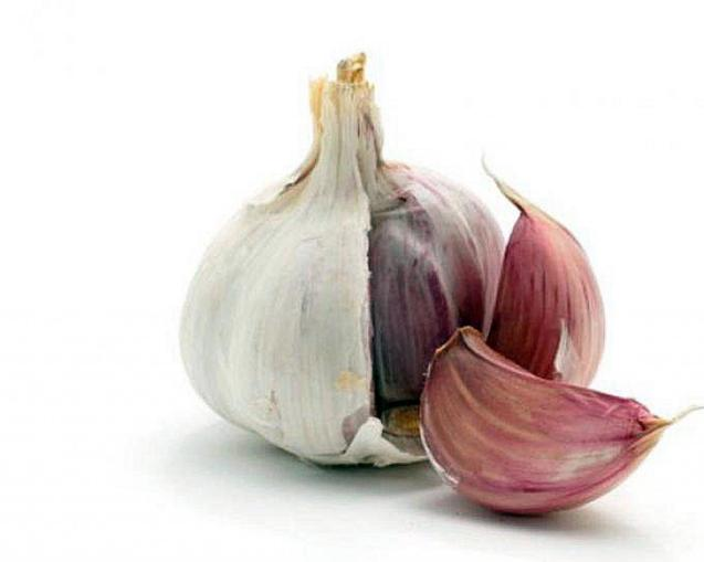 Garlic is used in many dishes