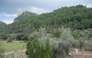 Tramuntana scene, Mallorca
