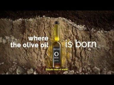 Spain where the olive oil is born' by Olive Oils From Spain