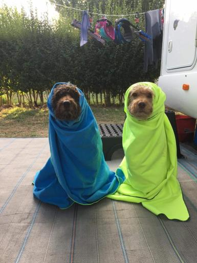 We got all wrapped up after the swimming.