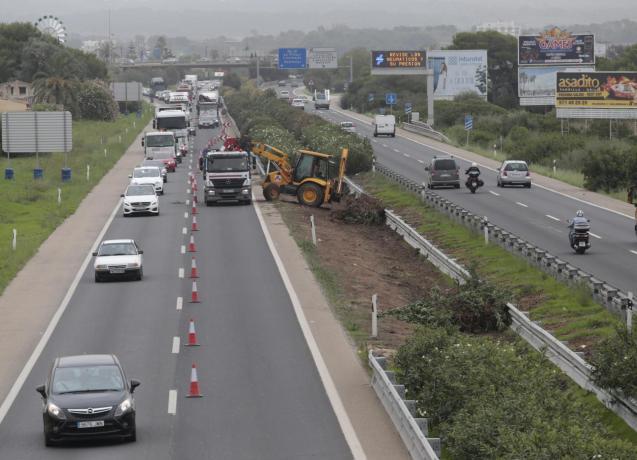 The Llucmajor motorway having gardening work done