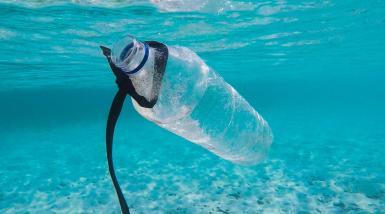 Plastic on the sea.