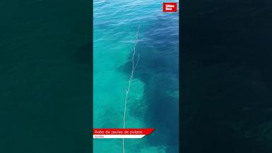Fishermen robbed in Alcudia.